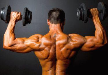 8 самых эффективных упражнений в зале для спины